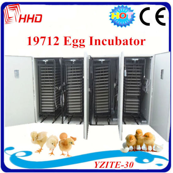 Full-Automatic-Large-Poultry-Chicken-Egg-Incubator-for-19712-Eggs.jpg