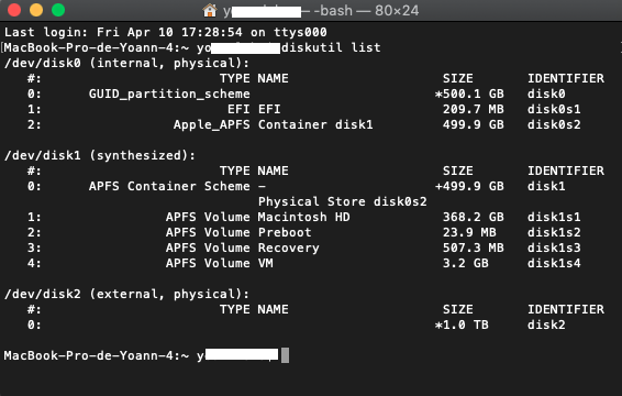 terminal disk list.png