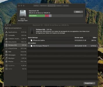 Capture d'écran 2021-01-27 à 19.44.20.png