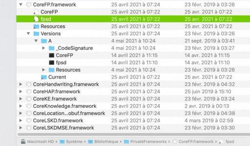 Capture d'écran 2021-05-09 à 11.56.46.jpg