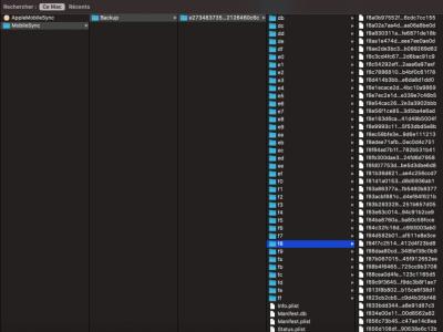 Capture d'écran 2021-08-11 à 18.18.59.png