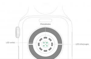 watch-series4-measure-sensors.png