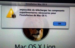 lion_NOK.jpg