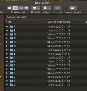 Capture d'écran 2020-06-23 à 10.25.02.jpg