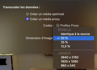 Capture d'écran 2020-11-03 à 10.02.35.jpg