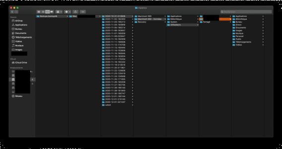 Capture d'écran 2020-12-01 à 23.04.09.png